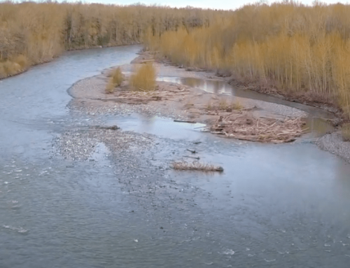 Environmental advocate calls for collaboration on water issues