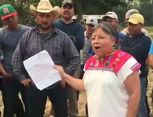Protecting Farmworkers